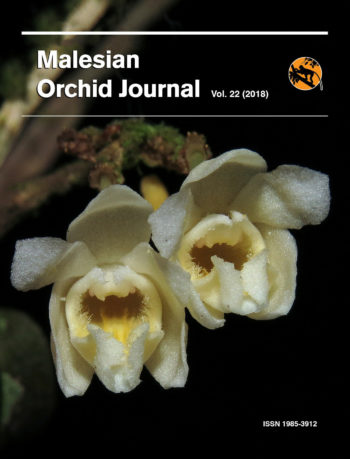 Malesian Orchid Journal Vol 22 Front Cover